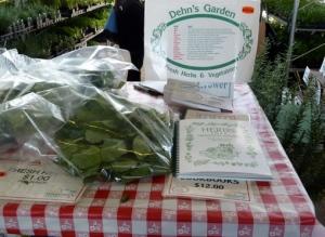 Dehn's  Garden's Herbs & Plants Copyright CKatt