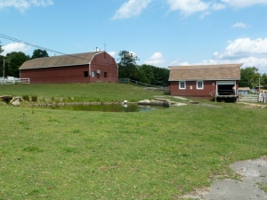 The Farm School Buildings August 2014 CKatt