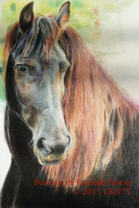 Portrait of A Friesian Horse CKatt 2015 - 3rd Stage