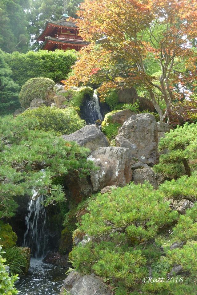 view-in-gloden-gate-japanese-garden