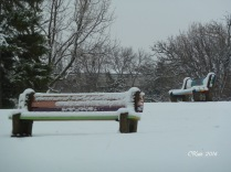 parke-benches