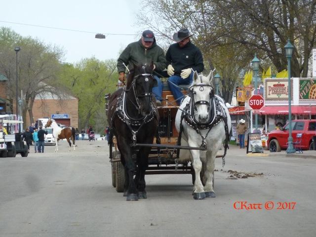 B&W 2 Cart MHE 2017 CKatt