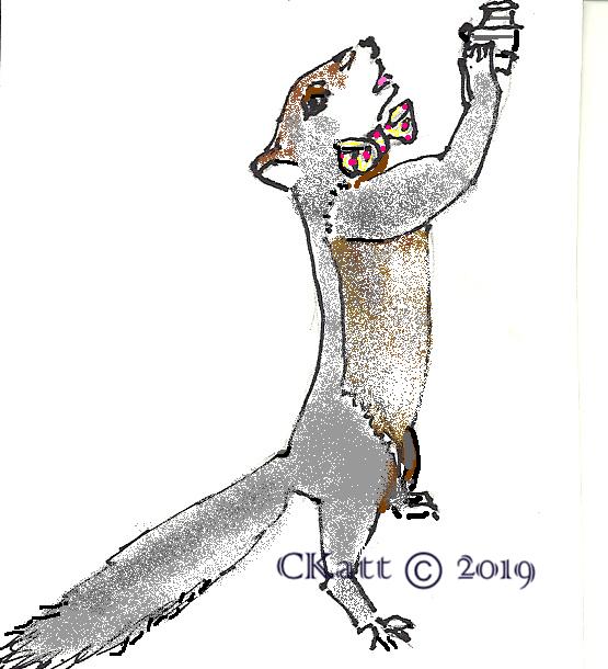ckatt ©squirrels 7-2015-color camera stand