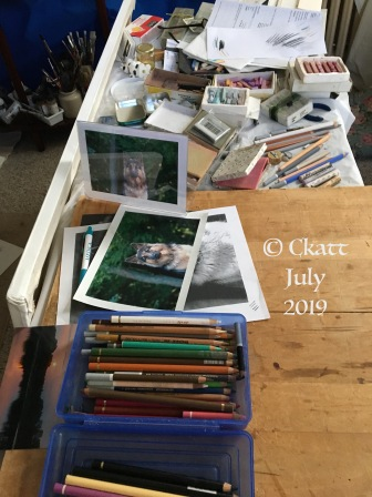 Work in Progress Ckatt July 2019
