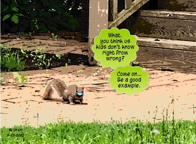 Baby Squirrel Cartoon CKatt 5-27-2020