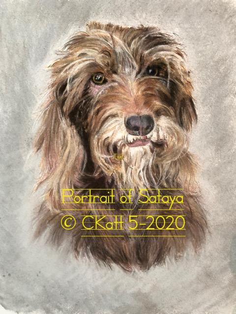 Portrait sataya 5-14-2020 CKatt